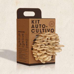 Kit-Autocultivo-de-setas